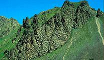 La Val Gimont e il Colletto Verde